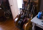 Paula_Guitars