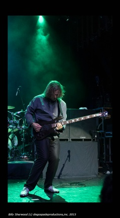 BillySherwood_Yes1_72dpi