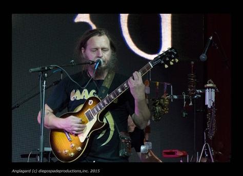 Anglagard_GuitarSing_72dpi