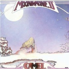 camel_moonmadness_72dpi